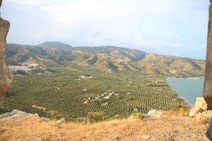 monte saraceno ulivi mare foggia puglia